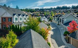Real Estate Market for 2019